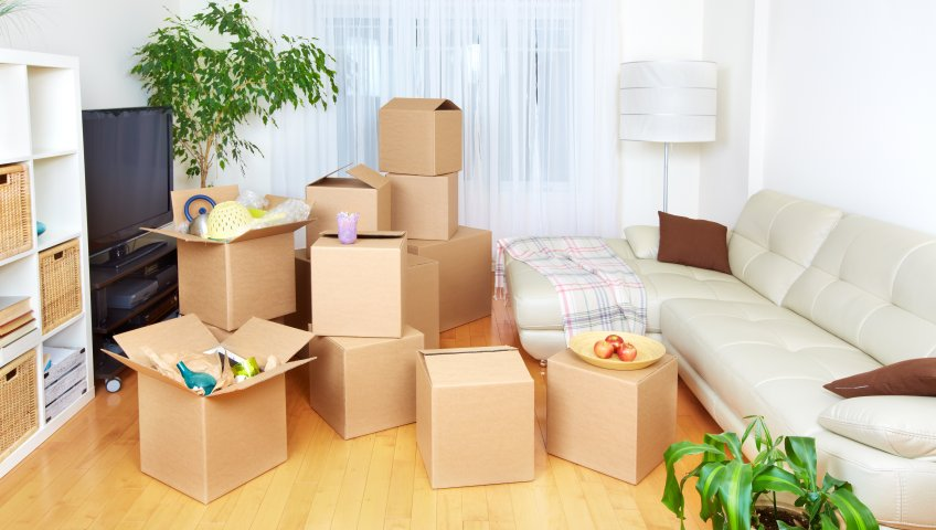 Packers and Movers Hyderababad
